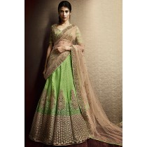 Paaneri Designer Light Green Color Net With Velvet Embroidery Unstich Lehenga With Tan Net Pallu-Product Code-17102505803