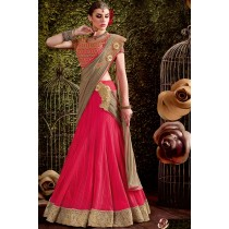 Paaneri Designer Shaded Pink With Rust Color Embroidery Border Jute Net & Net Lehenga Saree-Product Code-17119440704