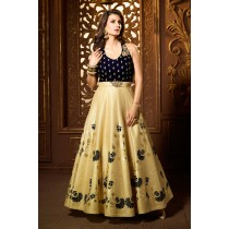 Paaneri Desinger Navy Blue Color Velvet Hand Work with PaleGoldenrod Dupion Silk Long Gown -18122188402